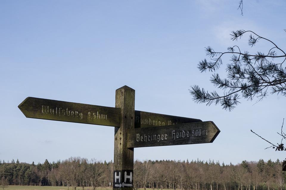 Directory, Heide, Lüneburg Heath, Hiking, Nature