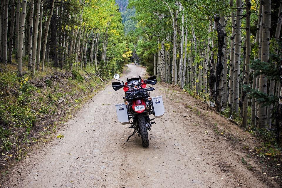 Adventure, Aspen, Aspen Trees, Dirt Bike, Dirt Road