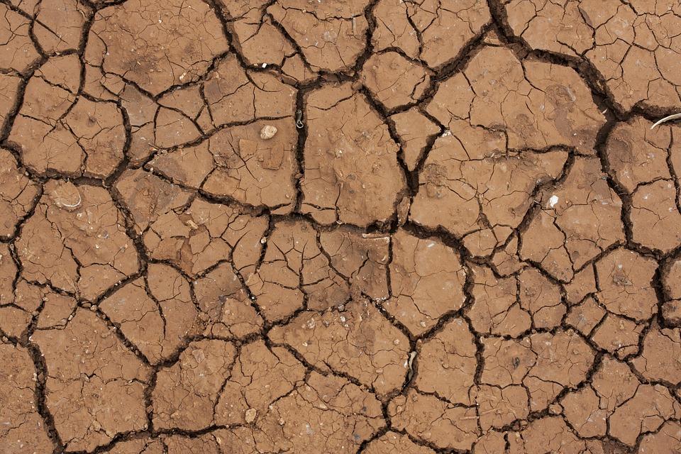 Desert, Dirt, Dry, Cracked, Mud, Terry, Textured