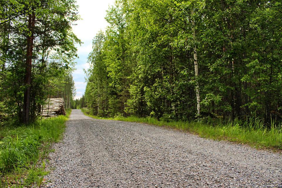 Dirt Road, Finland, Nature, Road, Dirt, Forest, Tree