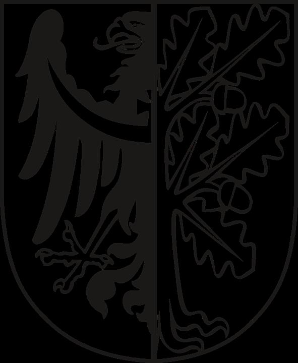 Coat Of Arms, District Wałbrzyski, Poland, Dolnośląski