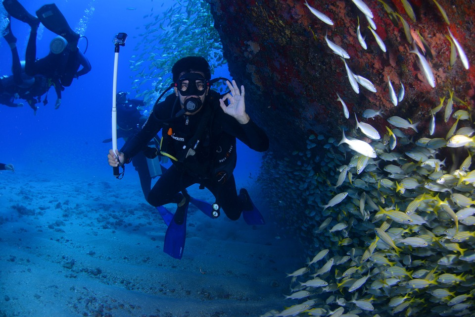 Dive, Blue, Diving Deep, At The Bottom Of The Ocean