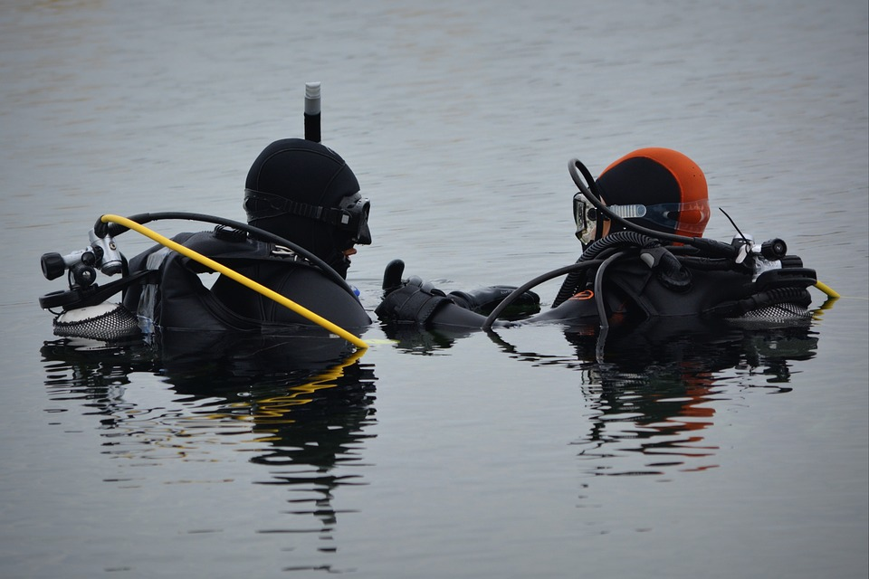 Divers, People, Hobby, Water, Diving, Diver, Sports
