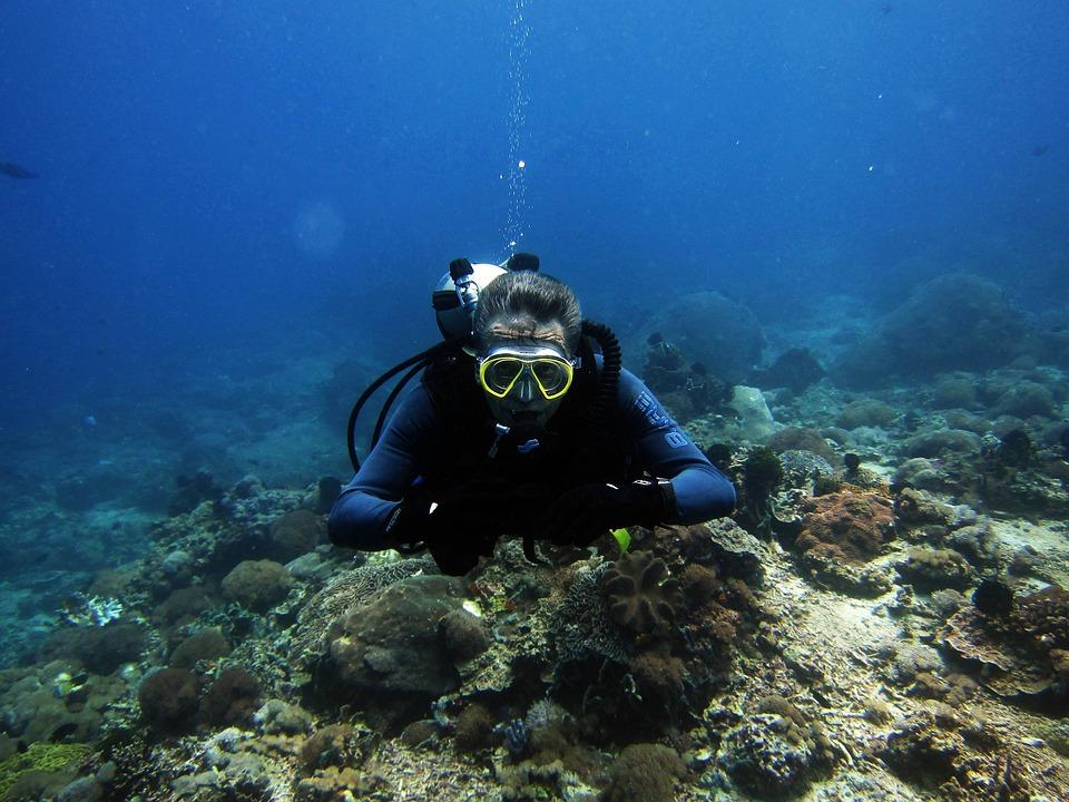 Diving, Diver, Scuba Diving