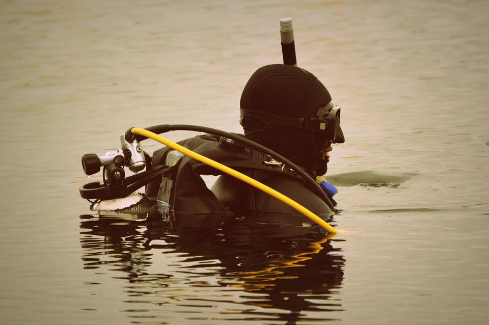 Diver, Hobby, Water, Diving, Sports, People