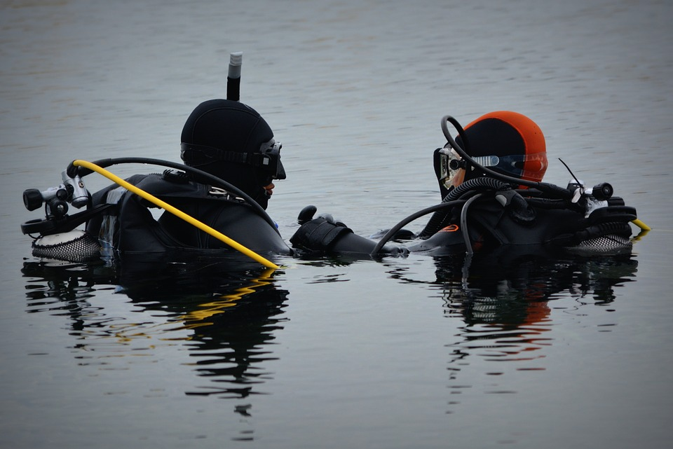 Divers, People, Hobby, Water, Sports, Diving