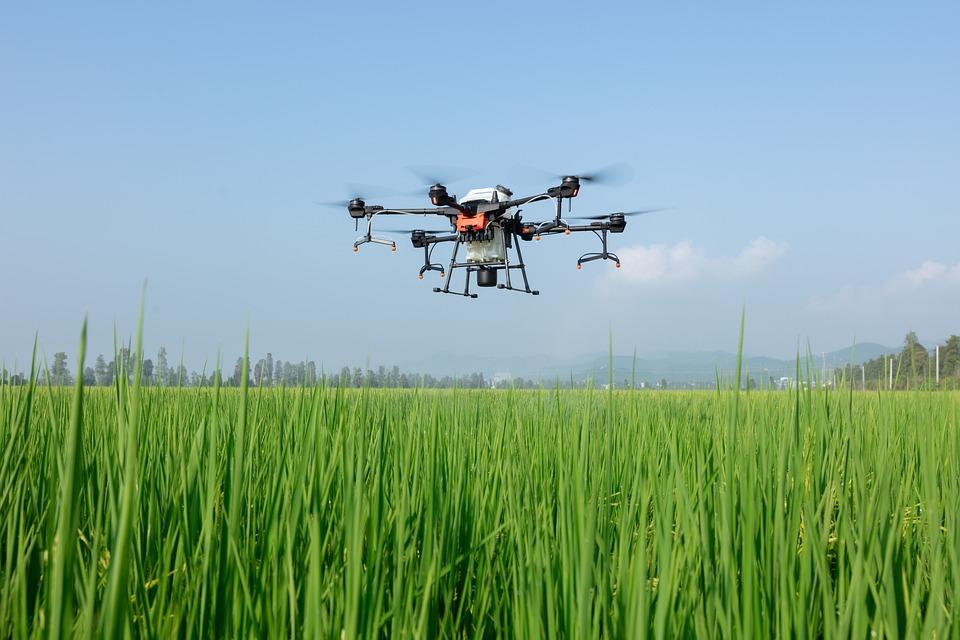 Dji, Uav, Plant Protection Drone, Farmland, Agriculture