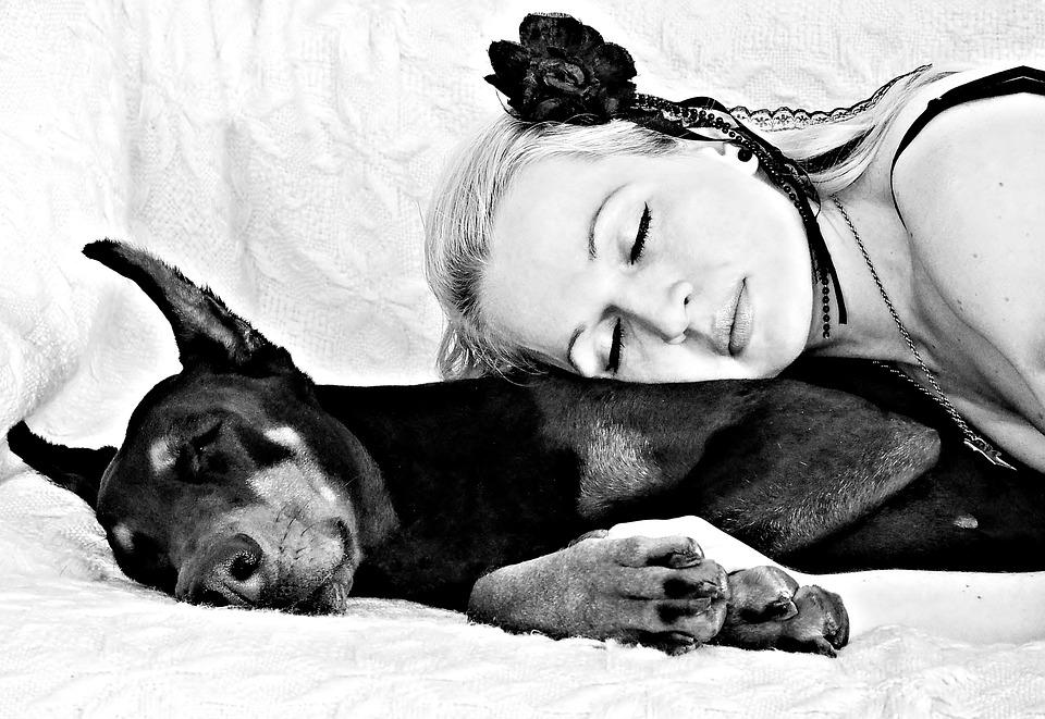 Black White, Dog, Blonde Woman, Doberman, Sleep, Love