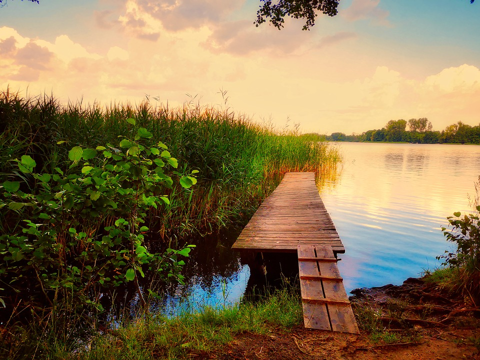 Web, Bathing Place, Lake, Swim, Jetty, Waters, Dock