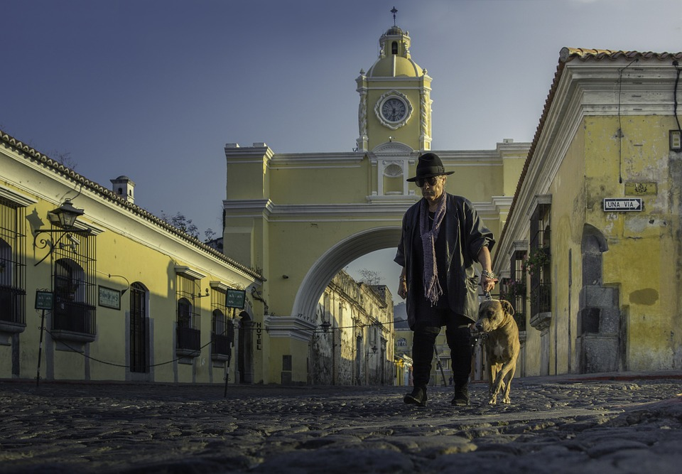 Antiguaguatemala, Guatemala, Streets, Dog, Hat, Arc
