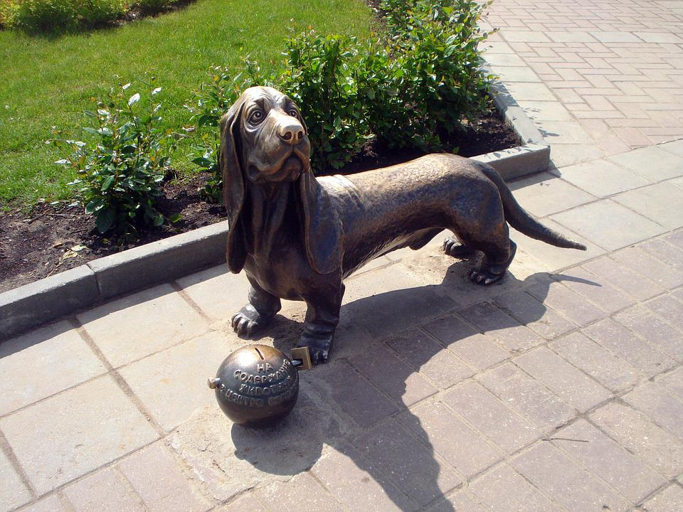 Kostroma, Dog, Sculpture, Charity, Bronze, Dachshund