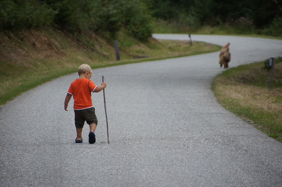 Child, Dog, Nature, Landscape, Road