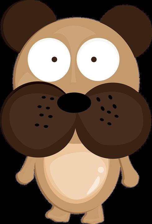 Dog, Cute, Animals