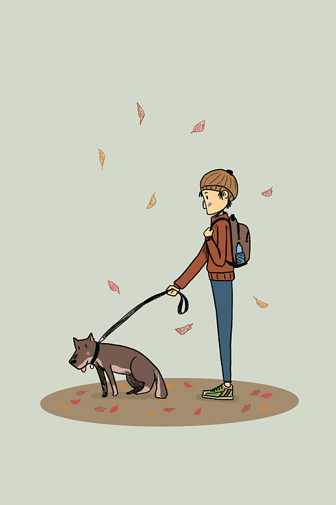 Dog, Human, Man, Walking, Fall, Fall Season, Leaf