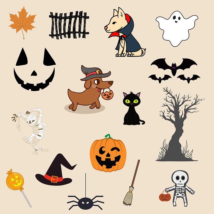 Pumpkin, Costume, Dog, Cat, Halloween, Horror, Scary