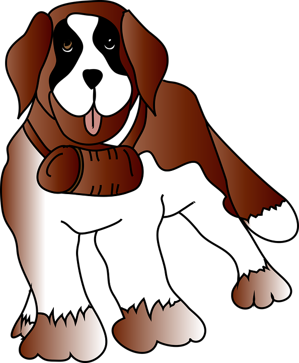 Dog, Animal, Pet, Rescue, Saint Bernard, St Bernard