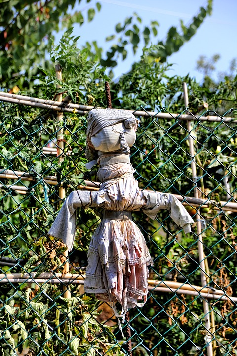 Scarecrow, Garden, Doll, Figure, Agriculture