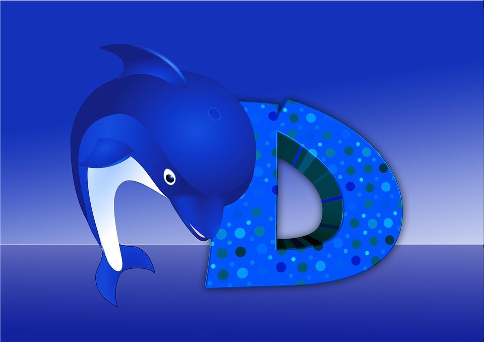 Letters, Abc, Education, Dolphin, Alphabet, Literacy