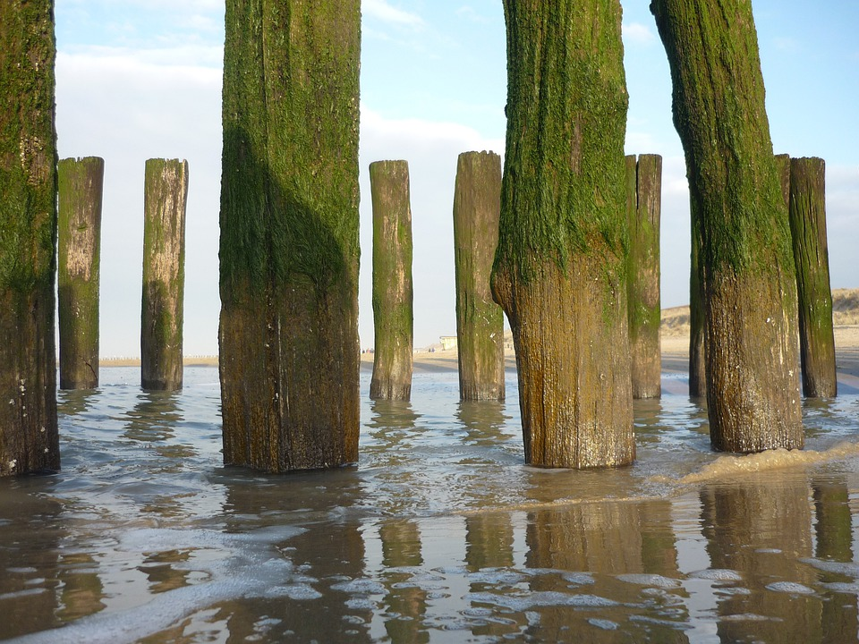 Domburg, Nature, Sea, Water, Landscape