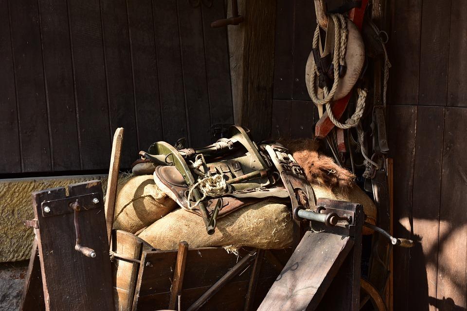 Pet Dishes, Saddle, Work Harness, Horse, Donkey