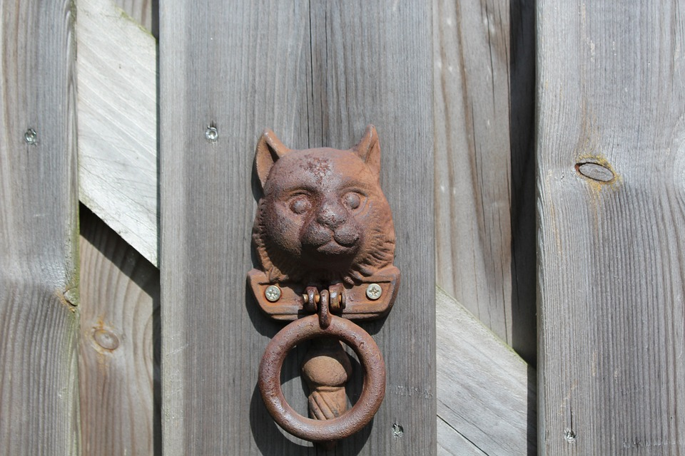 knock gate cat old wood decoration doorknob home