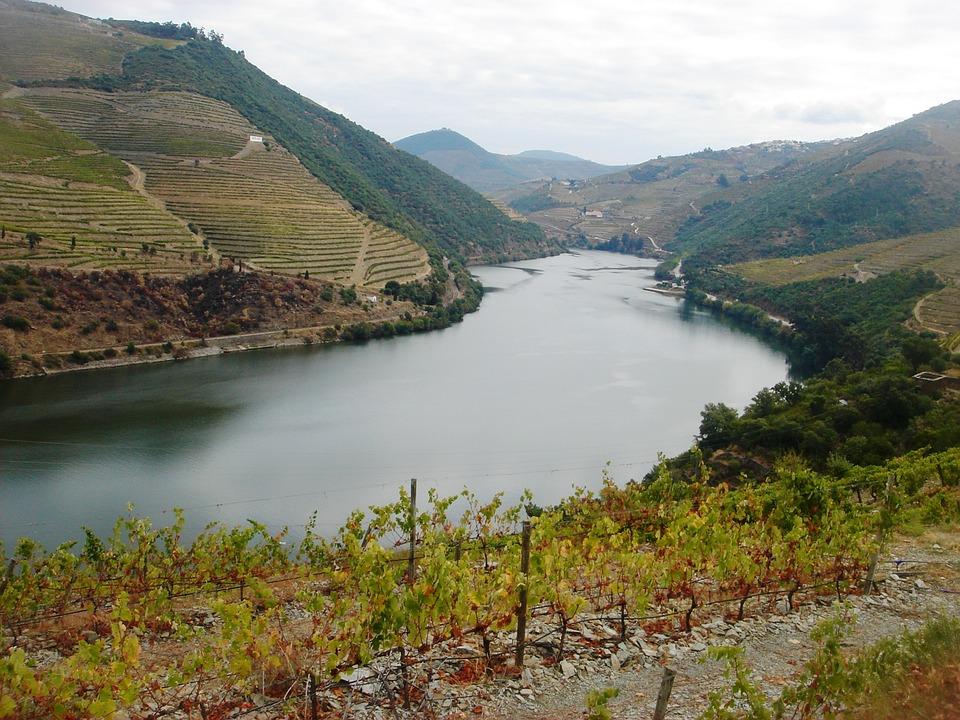 River Douro, Douro Vineyards, Douro Landscape
