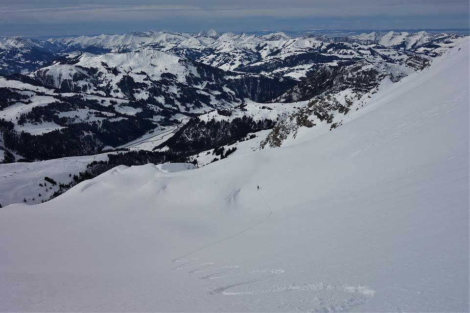 First Line, Backcountry Skiiing, Downhill Skiing