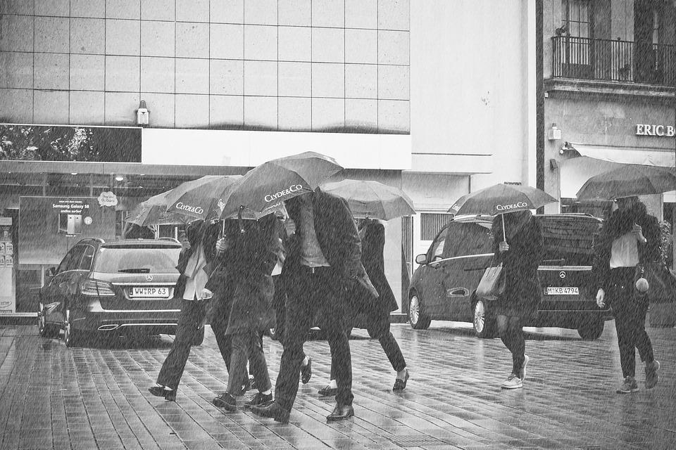 Rain, Storm, Weather, Cloudburst, Downpour, Rainstorm