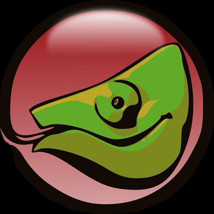 Lizard, Dragon, Creature, Green, Reptile