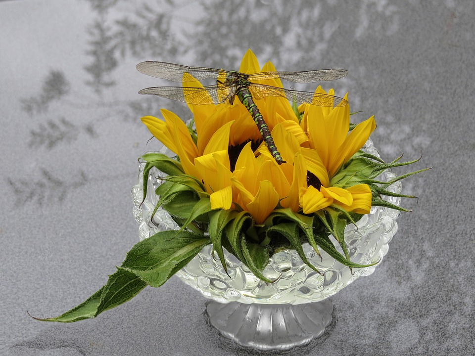 Free Photo Dragonfly Sun Flower Glass Bowl Decoration Max Pixel