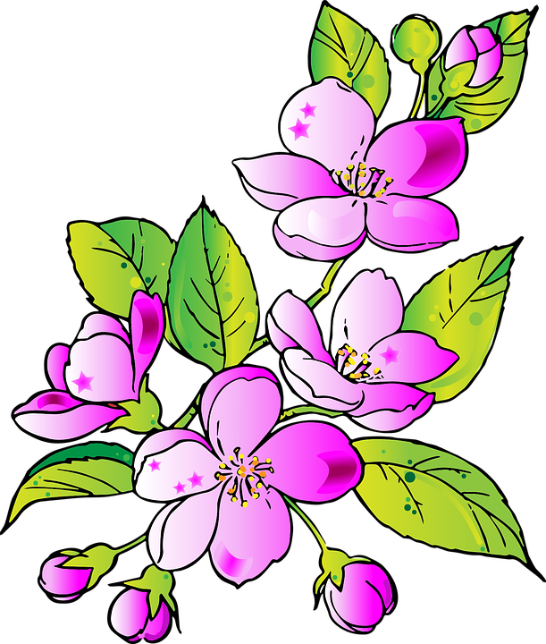 Flowers, Drawing, Flower, Pink, Spring, Pink Flower