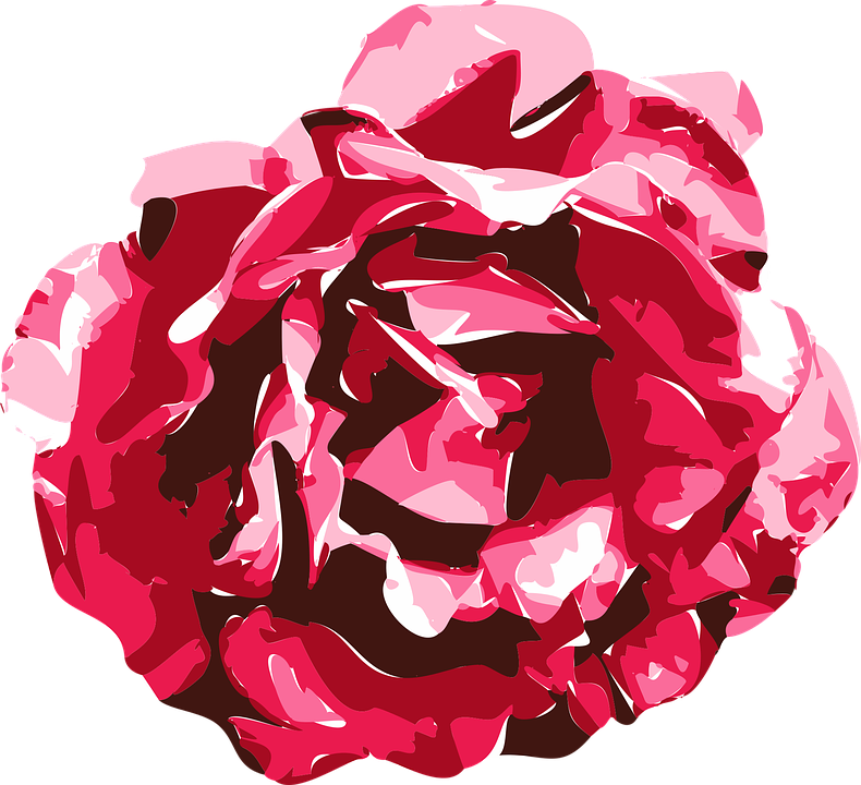 Free photo drawing red model graphics vector rose texture max pixel rose vector graphics drawing model texture red voltagebd Choice Image