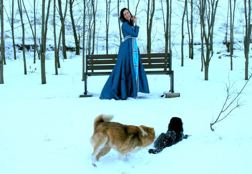 Girl, Princess, Snow, Dog, Blue, Dress, Nice