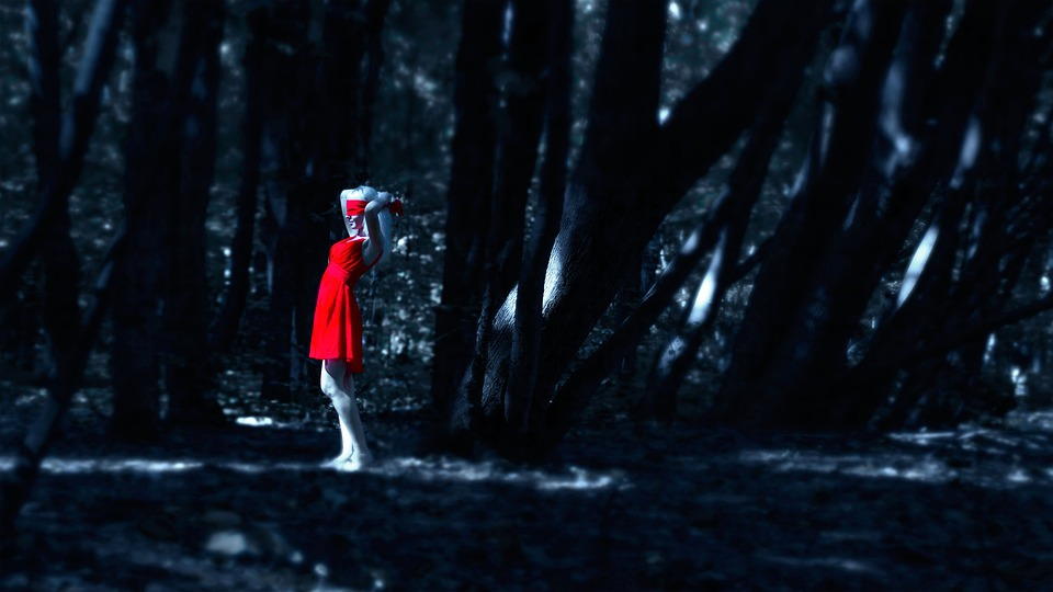 The Girl In The Red Dress In The Forest, Dress