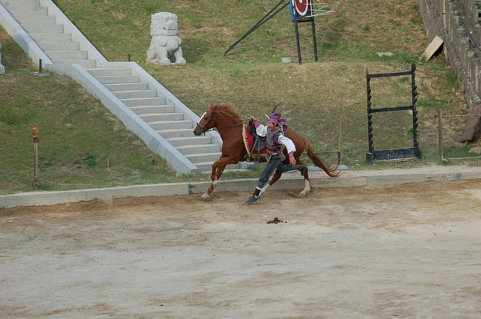 Dressage, Army, Gallery, Republic Of Korea, Stunts