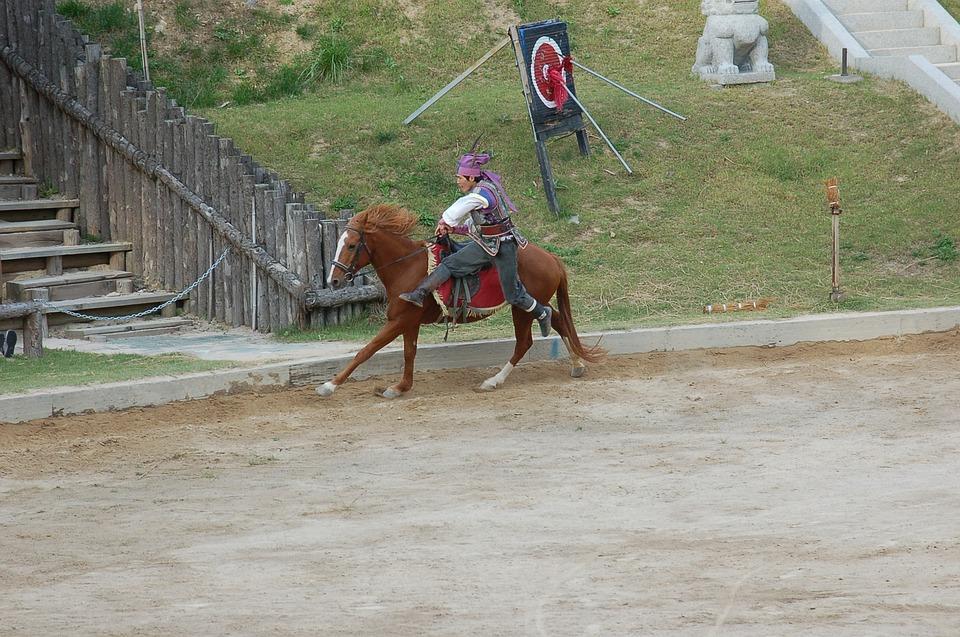 Dressage, Horse, Stunts, Gallery, Republic Of Korea