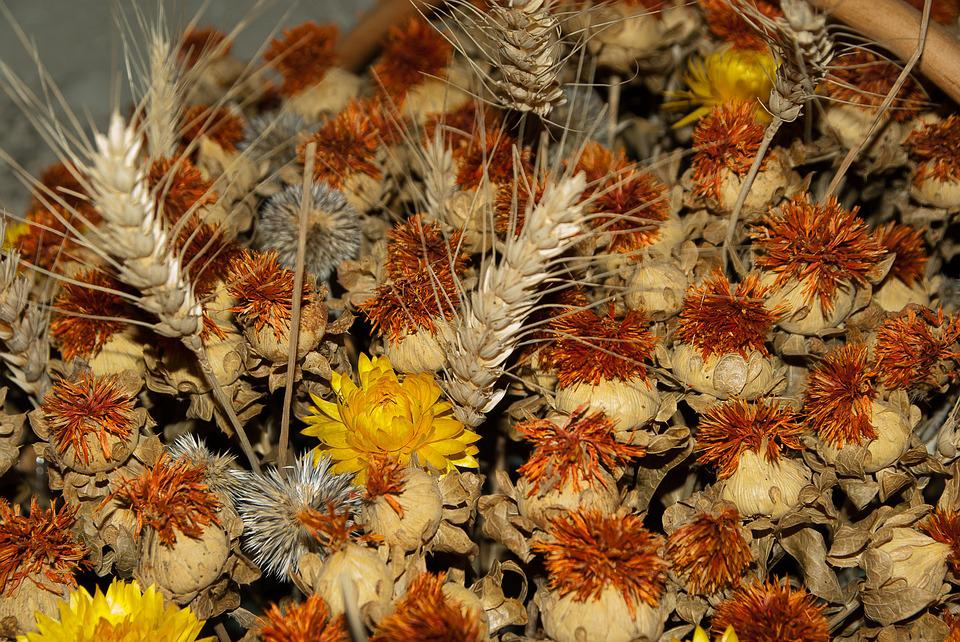 Dried Flowers, Spikes, Wheat, Bouquet