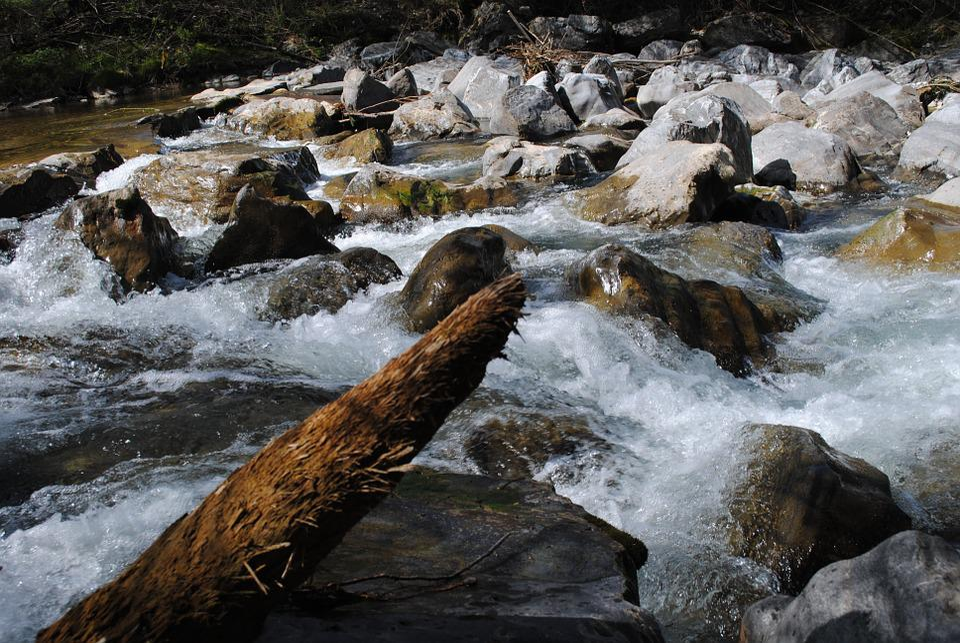 Water, Log, River, Drift Wood