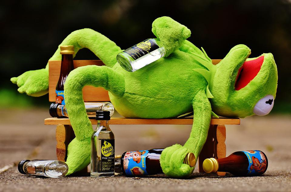 how NOT to combat jet lag. for shame, Kermit