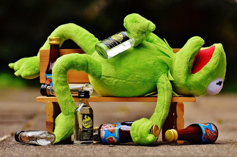 how NOT to combat jet lag. for shame, Kermit