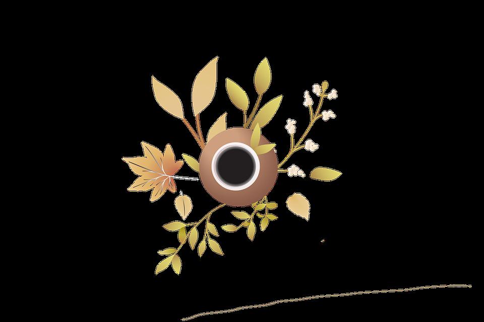 Tea, Teacup, Leaves, Cup, Drink, Beverage, Plant