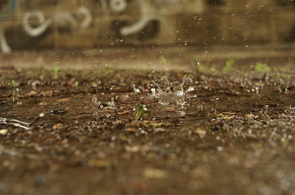 Water, Drip, Drop Of Water, Liquid, Rain