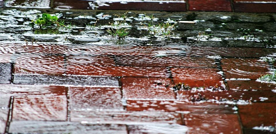 Rain, Water, Drip, Mirroring, Raindrop, Wet