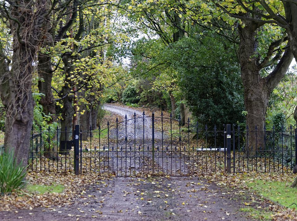 Driveway, Country Lane, Road, Lane, Country, Landscape