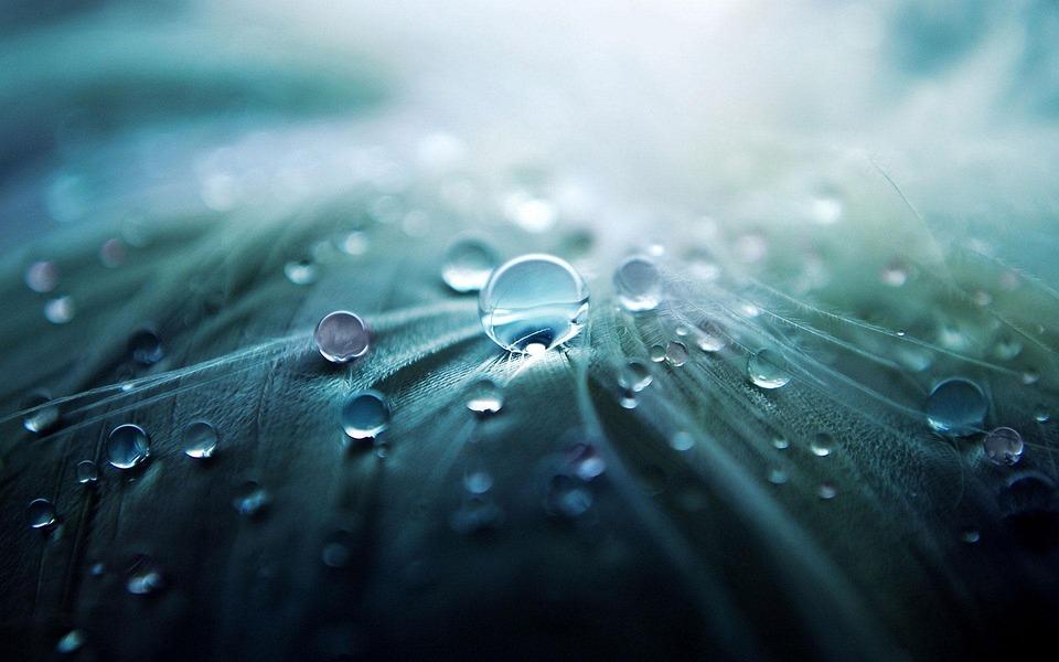 Water, Drop, Drop Of Water, Character, Rain, Blue
