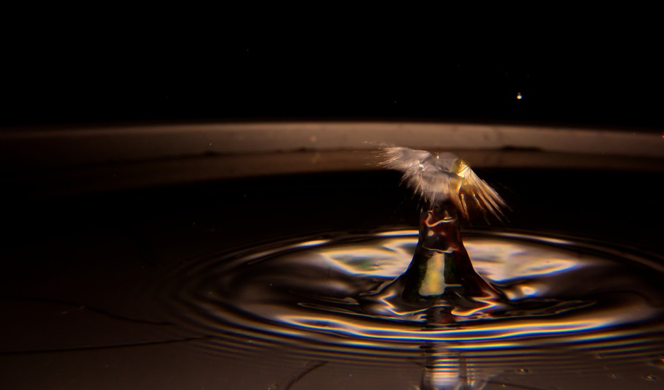 Drip, Water, Rain, Drop Of Water, Macro, Liquid