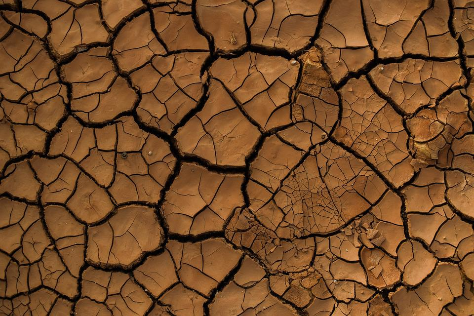 Drought, Aridity, Aridness, Dry, Crack, Texture