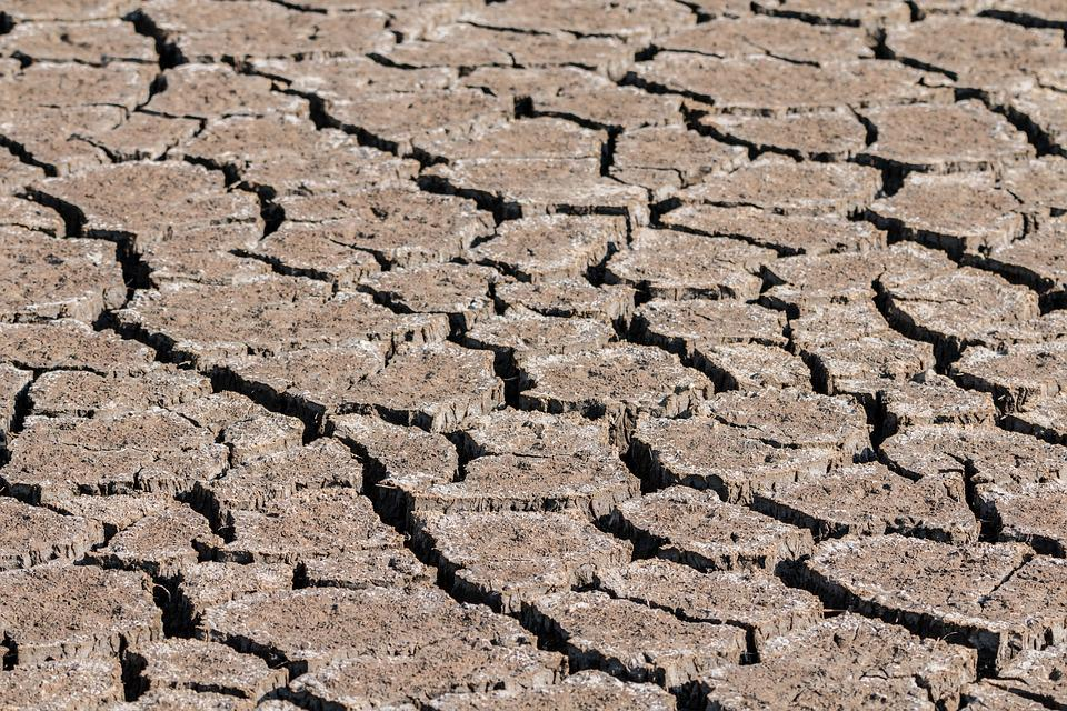 Drought, Ground, Cracks, Dehydrated, Dry, Swamp
