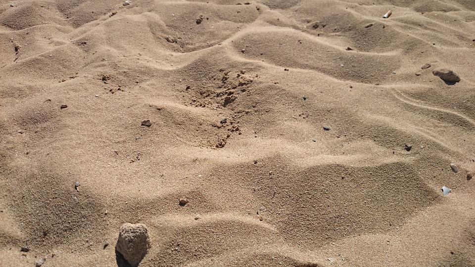 Beach, Sand, Desert, Hot, Dry, Drought