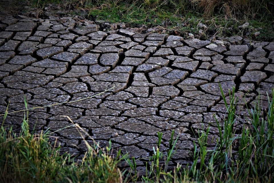 Dry, Drought, Nature, Landscape, Sand, Close Up, Earth